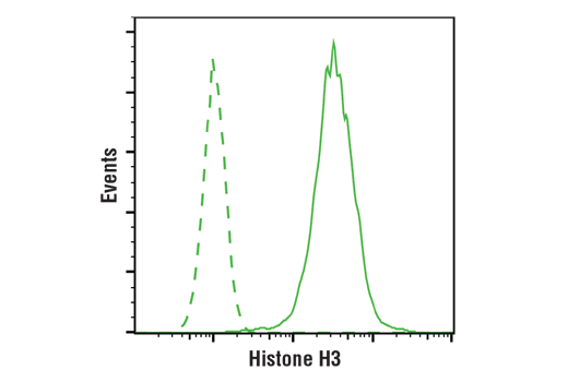 Flow Cytometry Image 1: Histone H3 (1B1B2) Mouse mAb