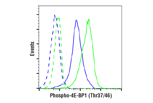 Flow Cytometry Image 1: Phospho-4E-BP1 (Thr37/46) (236B4) Rabbit mAb