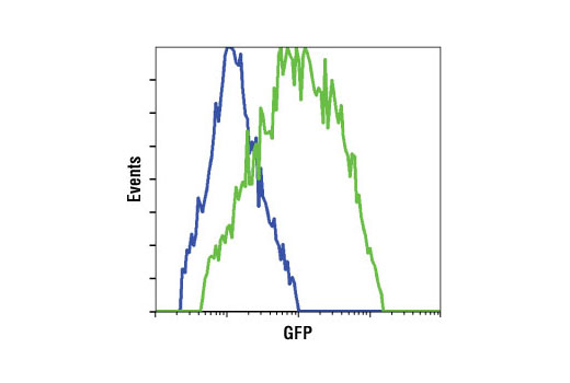 Flow Cytometry Image 1: GFP (4B10) Mouse mAb