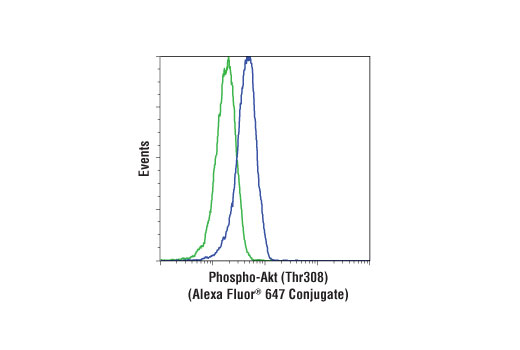 Flow Cytometry Image 1: Phospho-Akt (Thr308) (D25E6) XP® Rabbit mAb (Alexa Fluor® 647 Conjugate)