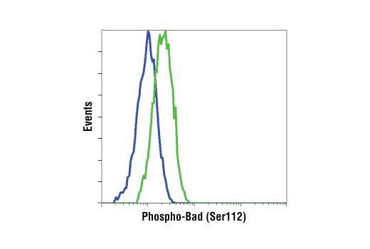 Flow Cytometry Image 1: Phospho-Bad (Ser112) (40A9) Rabbit mAb