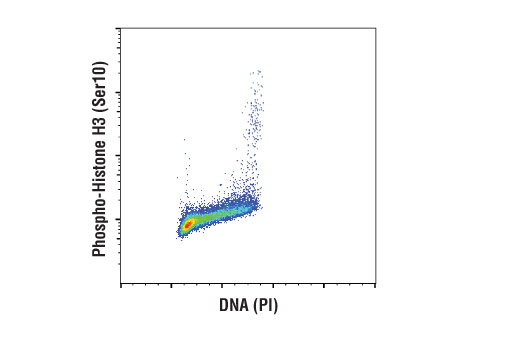 Flow Cytometry Image 1: Phospho-Histone H3 (Ser10) (D7N8E) XP® Rabbit mAb
