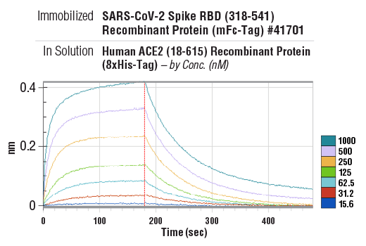 Image 1: Human ACE2 (18-615) Recombinant Protein (8xHis-Tag)