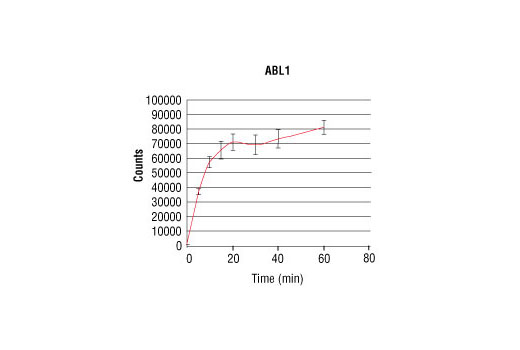 Image 4: HTScan® ABL1 Kinase Assay Kit