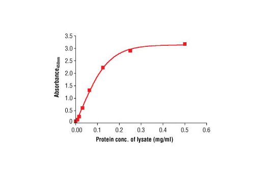 PathScan® Total α-Tubulin Sandwich ELISA Antibody Pair - ELISA, UniProt ID P68363, Entrez ID 10376 #7945 - #7945