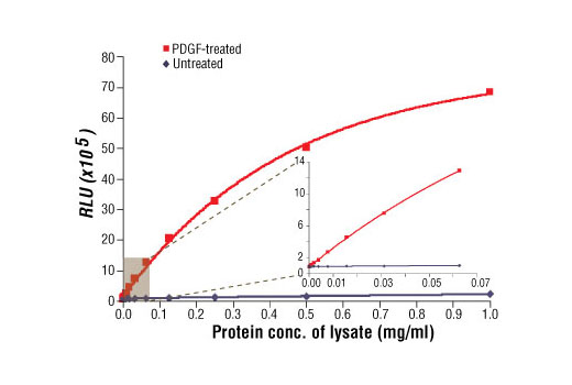 Figure 1: Relationship between protein concentration of lysates from untreated and PDGF-treated NIH/3T3 cells and immediate light generation with chemiluminescent substrate is shown. Cells (80% confluence) were treated with PDGF #9909 (50 ng/ml) and lysed after incubation at 37ºC for 20 minutes. Graph inset corresponding to the shaded area shows high sensitivity and a linear response at the low protein concentration range.