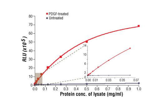 PathScan® Phospho-Akt1 (Ser473) Chemiluminescent Sandwich ELISA Kit, UniProt ID P31749, Entrez ID 207 #7134
