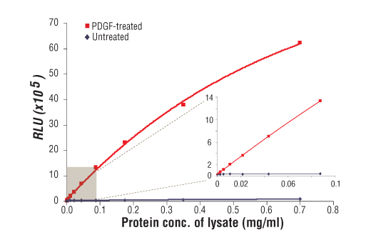 Figure 1: Relationship between protein concentration of lysates from untreated and PDGF-treated NIH/3T3 cells and immediate light generation with chemiluminescent substrate is shown. Cells (80% confluence) were treated with PDGF #9909 (50 ng/ml) and lysed after incubation at 37ºC for 5 minutes. Graph inset corresponding to the shaded area shows high sensitivity and a linear response at the low protein concentration range.