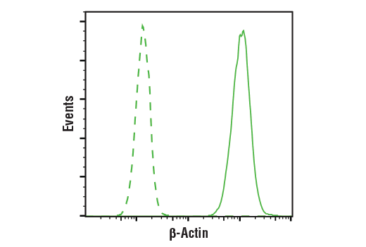 Flow Cytometry Image 1: β-Actin (8H10D10) Mouse mAb
