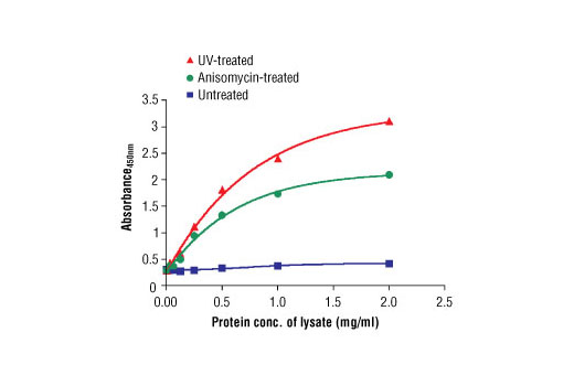 Figure 2. The relationship between lysate protein concentration from untreated, anisomycin-treated or UV-irradiated HeLa cells and the absorbance at 450 nm is shown.