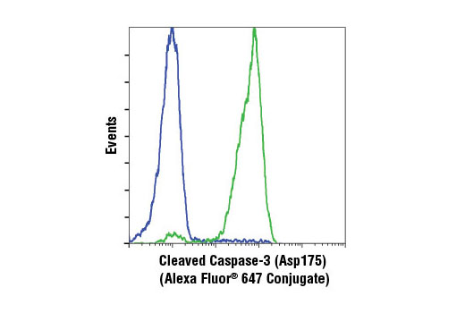 Flow cytometric analysis of Jurkat cells, untreated (blue) or treated with Etoposide #2200 (green), using Cleaved Caspase-3 (Asp175) (D3E9) Rabbit mAb (Alexa Fluor<sup>®</sup> 647 Conjugate).