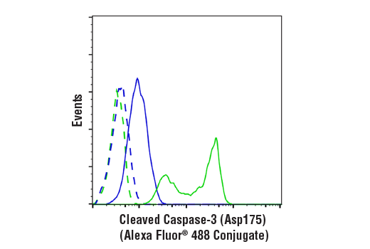 Flow cytometric analysis of Jurkat cells, untreated (blue) or treated with Etoposide (25 uM, overnight; green) using Cleaved Caspase-3 (Asp175) (D3E9) Rabbit mAb (Alexa Fluor® 488 Conjugate) (solid lines) or concentration-matched Rabbit (DA1E) mAb IgG XP<sup>®</sup> Isotype Control (Alexa Fluor<sup>®</sup> 488 Conjugate) #2975 (dashed lines).