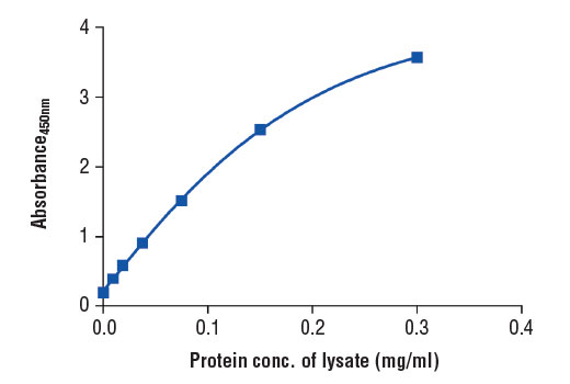 Figure 2. The relationship between protein concentration of lysates from HeLa cells and the absorbance at 450 nm as detected by the PathScan<sup>®</sup> Total AMPKα Sandwich ELISA Kit #7961 is shown. HeLa cells (85% confluence) were harvested and then lysed.