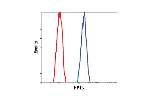 Polyclonal Antibody Immunoprecipitation Methylated Histone Residue Binding