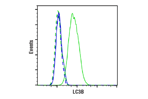 Flow Cytometry Image 1: LC3B (D11) XP® Rabbit mAb