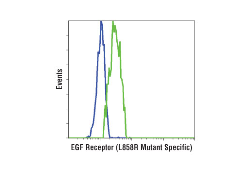 Flow cytometric analysis of two non-small cell lung cancer cell lines using EGF Receptor (L858R Mutant Specific) (43B2) Rabbit mAb. H3255 cells (green) harbor the L858R EGFR mutation while the H1650 cells (blue) have the exon 19 mutation (delE746-A750).