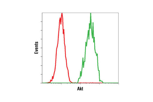 Flow cytometric analysis of untreated Jurkat cells using Akt (5G3) Mouse mAb #2966 detected with Anti-Mouse IgG (H+L), F(ab')<sub>2</sub> Fragment (Alexa Fluor<sup>®</sup> 647 Conjugate) (green) compared to a nonspecific negative control antibody (red).