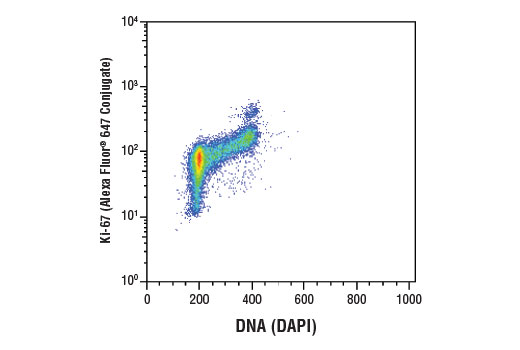 Flow cytometric analysis of Jurkat cells using Ki-67 (D3B5) Rabbit mAb (Alexa Fluor<sup>®</sup> 647 Conjugate) #12075 and DAPI (DNA content).