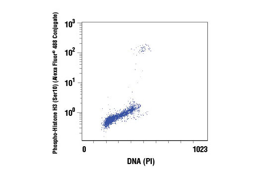 Flow Cytometry Image 1: Propidium Iodide (PI)/RNase Staining Solution