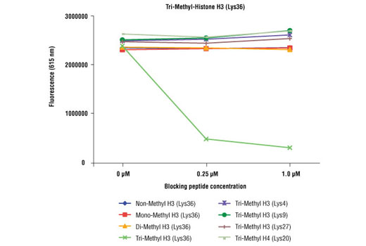 Tri-Methyl Histone H3 (Lys36) (D5A7) XP<sup>®</sup> Rabbit mAb specificity was determined by peptide ELISA. The graph depicts the binding of the antibody to pre-coated tri-methyl histone H3 (Lys36) peptide in the presence of increasing concentrations of various competitor peptides. As shown, only the tri-methyl histone H3 (Lys36) peptide competed away binding of the antibody.