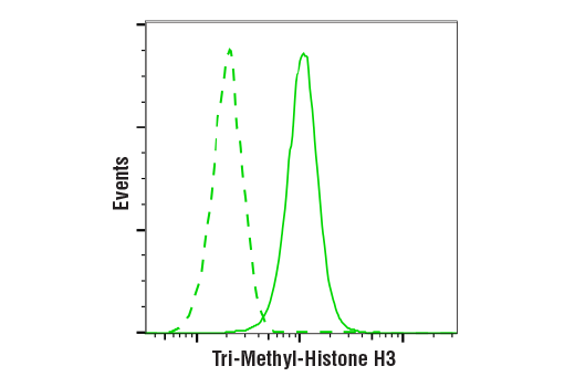 Image 6: Methyl-Histone H3 (Lys36) Antibody Sampler Kit