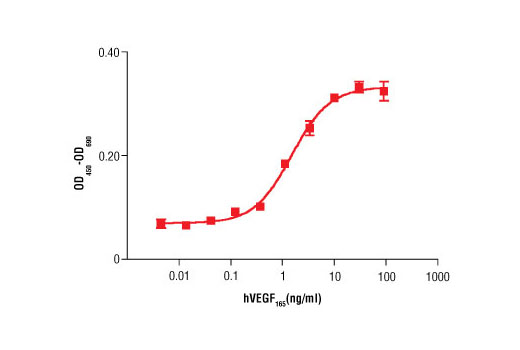 Image 1: Human Vascular Endothelial Growth Factor-165 (hVEGF165 )