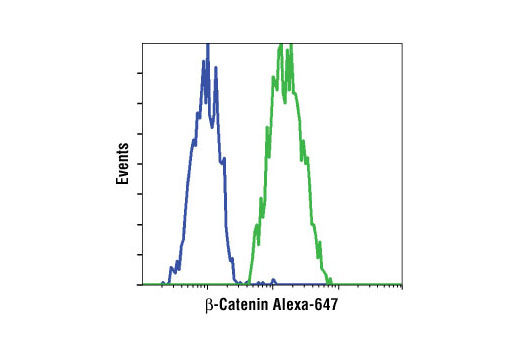 Flow cytometric analysis of NCI-H28 cells (blue) and HeLa cells (green) using β-Catenin (L54E2) Mouse mAb (Alexa Fluor<sup>®</sup> 647 Conjugate).