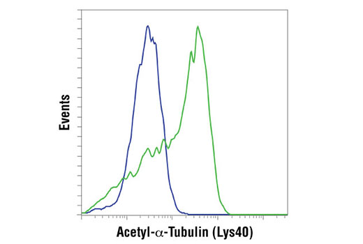 Flow cytometric analysis of HeLa cells, untreated (blue) or treated with Trichostatin A (TSA) #9950 (1uM, 16 hours) using Acetyl-alpha-Tubulin (Lys40) (D20G3) XP® Rabbit mAb. Anti-rabbit IgG (H+L), F(ab')2 Fragment (Alexa Fluor 488 Conjugate) #4412 was used as a secondary antibody.