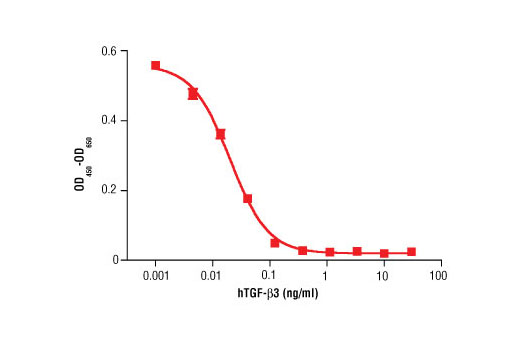 Image 1: Human Transforming Growth Factor β3 (hTGF-β3)