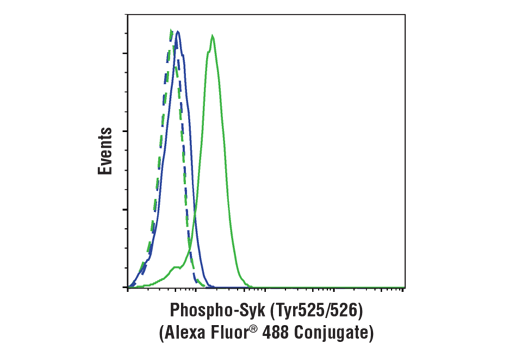 Flow cytometric analysis of Ramos cells, untreated (blue) or treated with IgM (10 ug/ml, 30 min; green) using Phospho-Syk (Tyr525/526) (C87C1) Rabbit mAb (Alexa Fluor® 488 Conjugate) (solid lines) or concentration-matched Rabbit (DA1E) mAb IgG XP<sup>®</sup> Isotype Control (Alexa Fluor<sup>®</sup> 488 Conjugate) #2975 (dashed lines).