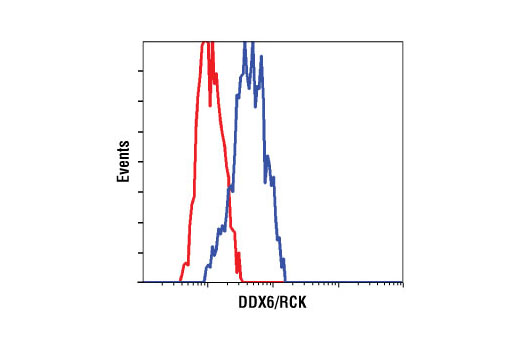 Flow cytometric analysis of HeLa cells using DDX6/RCK Antibody (blue) compared to a nonspecific negative control antibody (red).