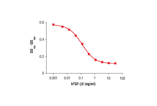 The inhibition of IL-4 induced proliferation in HT-2 cells treated with increasing concentrations of hTGF-β2 was assessed. After 48 hour treatment with hTGF-β2, cells were incubated with a tetrazolium salt and the OD<sub>450</sub>-OD<sub>650</sub> was determined.