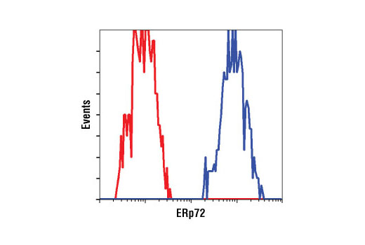 Flow Cytometry Image 11