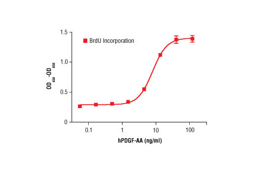 Growth Factors and Cytokines - Human Platelet-Derived Growth Factor AA (hPDGF-AA), UniProt ID P04085, Entrez ID 5154 #8913, Angiogenesis