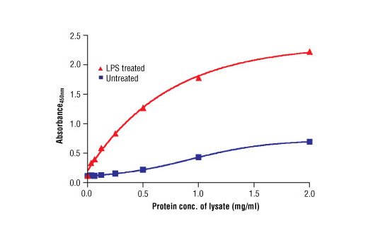 Figure 2. The relationship between the protein concentration of lysates from untreated and LPS-treated THP-1 cells and the absorbance at 450 nm using the PathScan<sup>®</sup> Phospho-IKKα (Ser176/180) Sandwich ELISA Kit is shown.