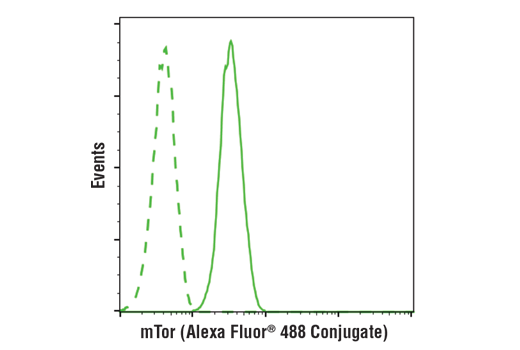 Flow cytometric analysis of Jurkat cells using mTOR (7C10) Rabbit mAb (Alexa Fluor® 488 Conjugate) (solid line) compared to concentration-matched Rabbit (DA1E) mAb IgG XP<sup>®</sup> Isotype Control (Alexa Fluor<sup>®</sup> 488 Conjugate) #2975 (dashed line).