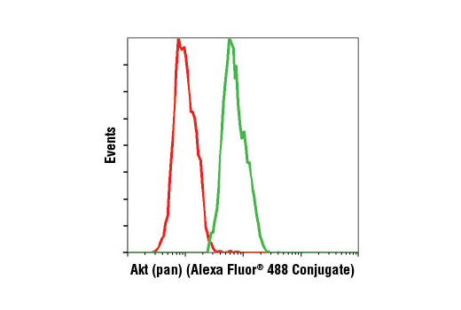 Flow Cytometry Image 1: Akt (pan) (C67E7) Rabbit mAb (Alexa Fluor® 488 Conjugate)