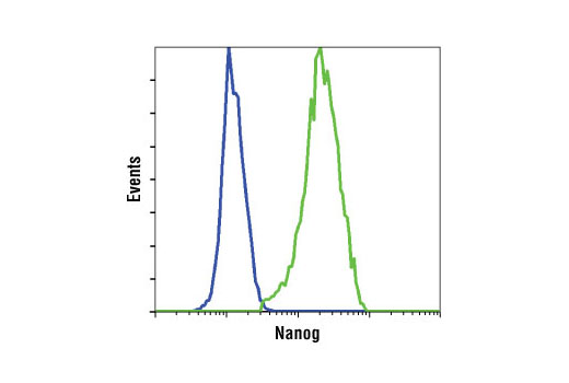 Flow cytometric analysis of HeLa cells (blue) and NTERA-2 cells (green) using Nanog (D73G4) XP<sup>®</sup> Rabbit mAb.