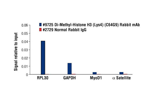 Image 7: Methyl-Histone H3 (Lys4) Antibody Sampler Kit