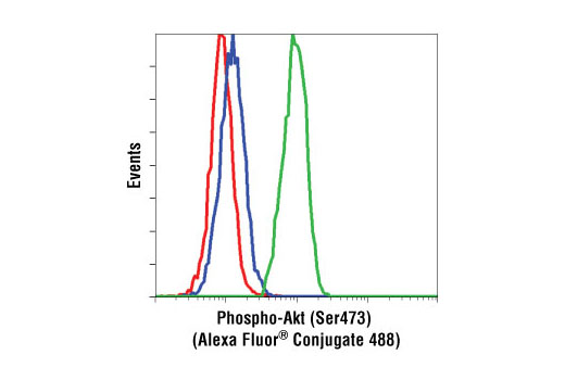 flow cytometric analysis of jurkat cells using rabbit igg isotype control alexa fluor 488 conjugate red compared to phospho akt ser473 193h12