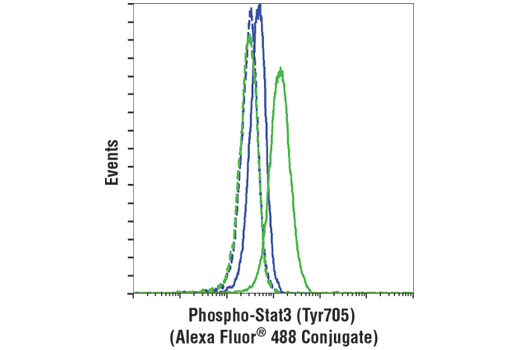 Flow cytometric analysis of Jurkat cells, untreated (blue) or treated with IFN-alpha #8927 (100ng/ml, 30min; green) using Phospho-Stat3 (Tyr705) (D3A7) XP® Rabbit mAb (Alexa Fluor® 488 Conjugate) (solid lines) or a concentration-matched Rabbit (DA1E) mAb IgG XP<sup>®</sup> Isotype Control (Alexa Fluor<sup>®</sup> 488 Conjugate) #2975 (dashed lines).