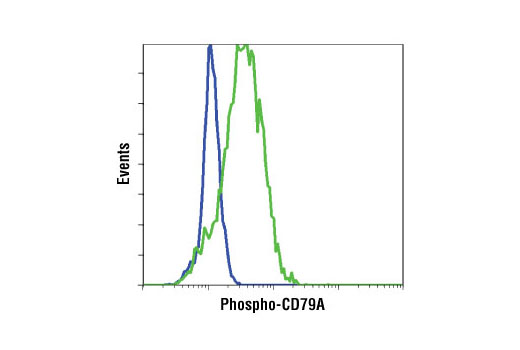 Flow cytometric analysis of Ramos cells, untreated (blue) or IgM-treated (green), using Phospho-CD79A (Tyr182) Antibody.