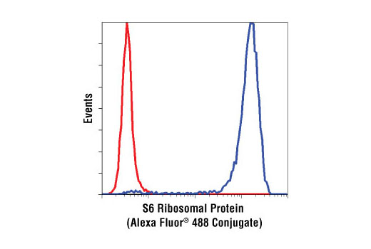 Flow cytometric analysis of Jurkat cells, using S6 Ribosomal Protein (54D2) Mouse mAb (Alexa Fluor® 488 Conjugate) (blue) compared to Mouse (MOPC-21) mAb IgG1 Isotype Control (Alexa Fluor® 488 Conjugate) #4878 (red).
