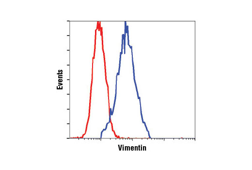 Flow cytometric analysis of HeLa cells, using Vimentin (D21H3) XP<sup>®</sup> Rabbit mAb (blue) compared to Rabbit (DA1E) mAb IgG XP<sup>®</sup> Isotype Control #3900 (red).