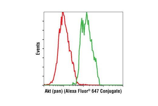 Flow cytometric analysis of Jurkat cells using Akt (pan) (C67E7) Rabbit mAb (Alexa Fluor<sup>®</sup> 647 Conjugate) (green) compared to Rabbit (DA1E) mAb IgG XP<sup>®</sup> Isotype Control (Alexa Fluor<sup>®</sup> 647 Conjugate) #2985 (red).