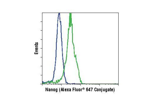 Flow cytometric analysis of HeLa cells (blue) and NTERA-2 cells (green) using Nanog (D73G4) XP<sup>®</sup> Rabbit mAb (Alexa Fluor<sup>®</sup> 647 Conjugate).