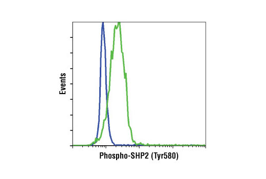 Flow cytometric analysis of NIH/3T3 cells, untreated (blue) or PDGF-treated (green), using Phospho-SHP-2 (Tyr580) (D66F10) Rabbit mAb.