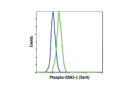 Flow cytometric analysis of NIH/3T3 cells, untreated (blue) or PDGF-treated (green), using Phospho-GSK-3β (Ser9) (D85E12) XP<sup>®</sup> Rabbit mAb.