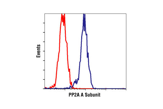 Flow cytometric analysis of NIH/3T3 cells, using PP2A A Subunit Antibody (blue) compared to a nonspecifc negative control antibody (red).