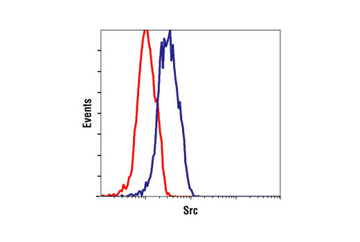Flow cytometric analysis of Jurkat cells, using Src Antibody (blue) compared to a nonspecifc negative control antibody (red).
